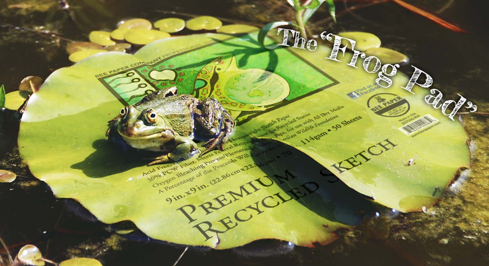 frog-pad